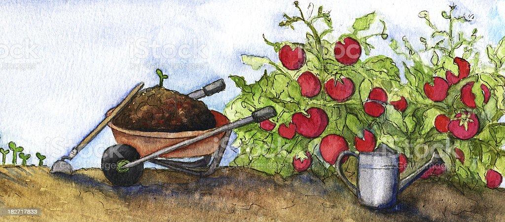 Watercolor wheelbarrow with tomato plants in Garden vector art illustration