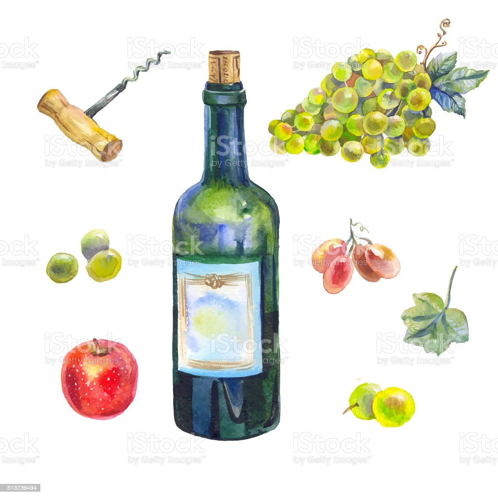 watercolor wine collection stock photo