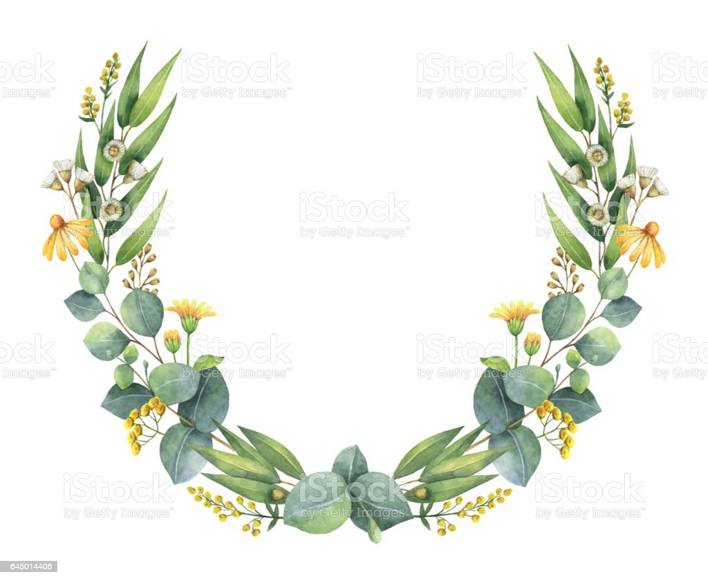 Watercolor wreath with eucalyptus leaves and branches for Watercolor greenery