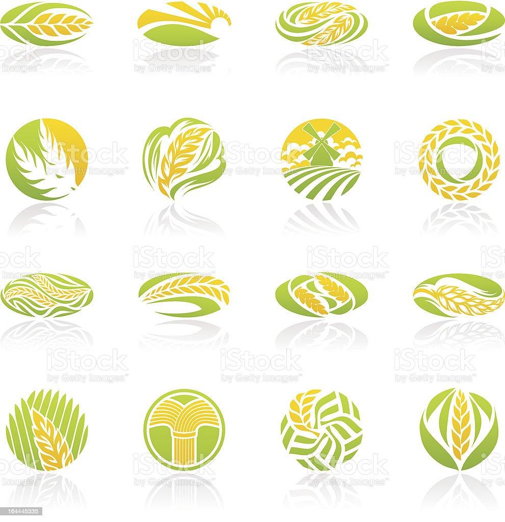 Wheat and rye. Icon set. vector art illustration