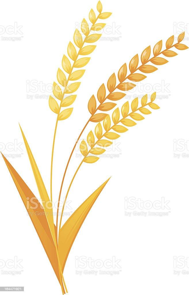 Wheat ears royalty-free stock vector art