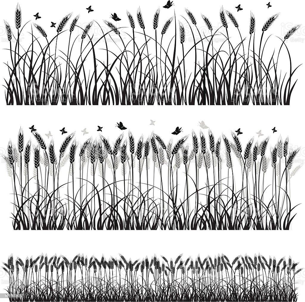 Wheat Silhouette vector art illustration