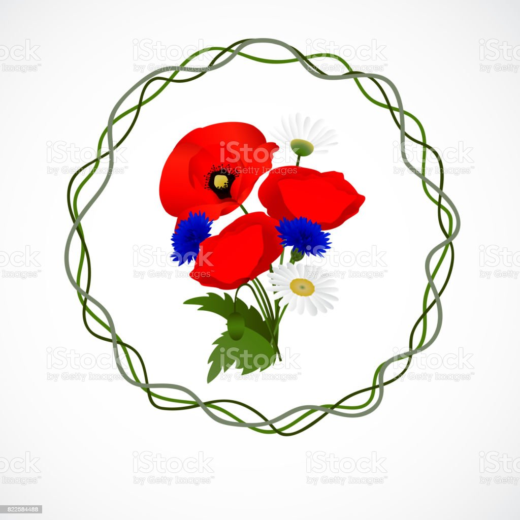 white background with chamomile, cornflowers and poppies vector art illustration