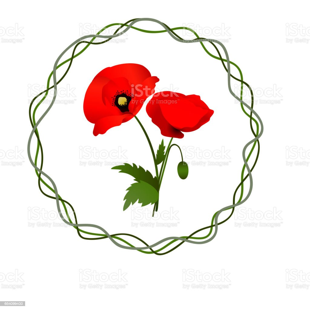 White background with poppies vector art illustration