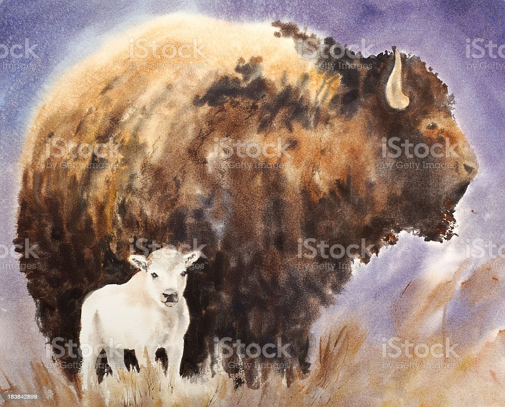 White Buffalo Calf vector art illustration