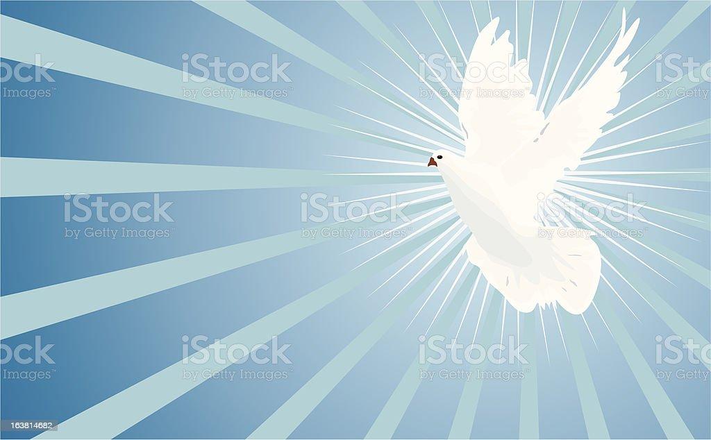 White Dove (vector) royalty-free stock vector art