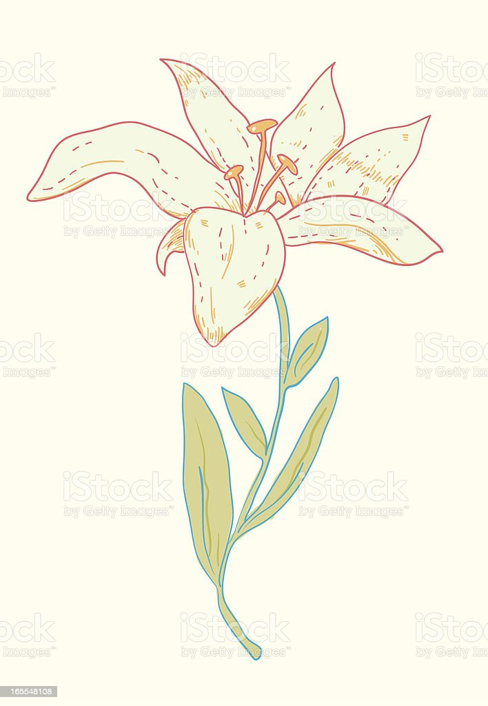 White flower vector art illustration