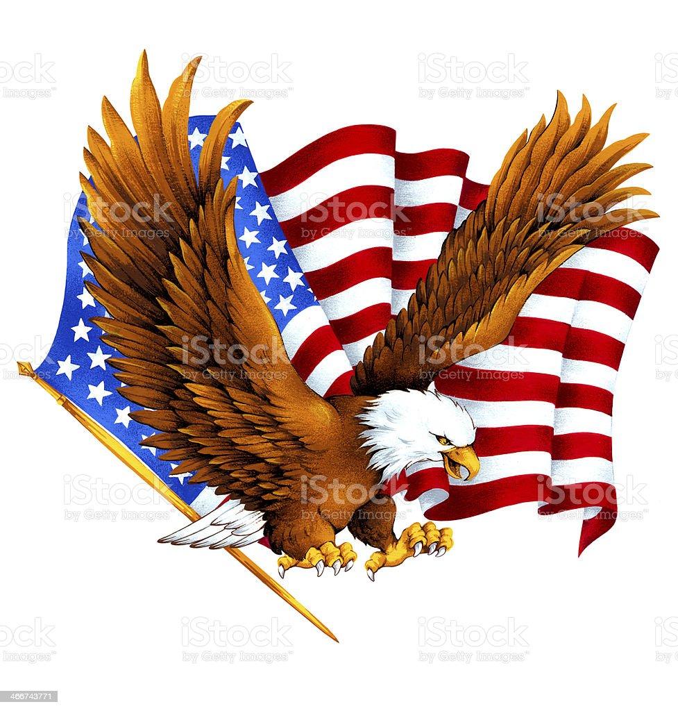white head eagle vector art illustration