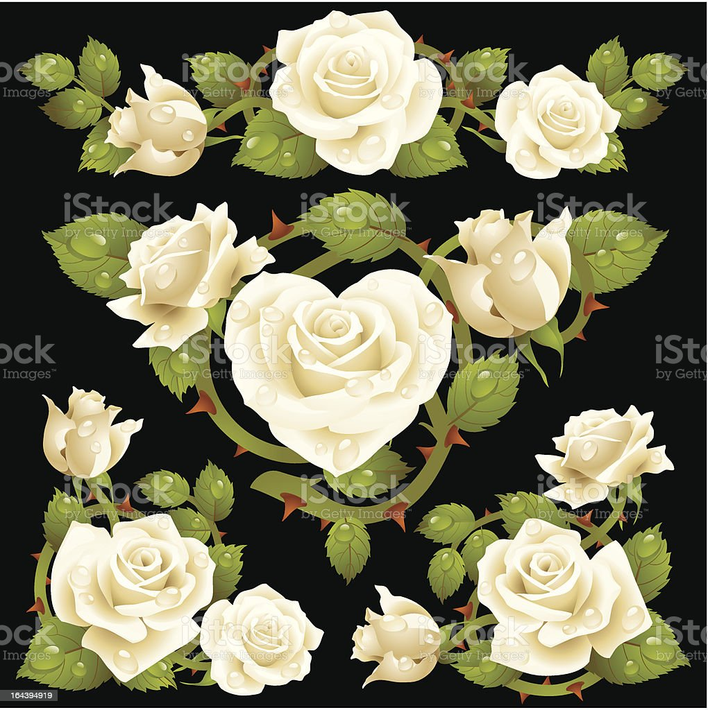 White Rose design elements royalty-free stock vector art