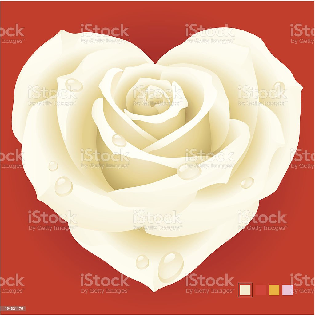 White rose in the shape of heart royalty-free stock vector art