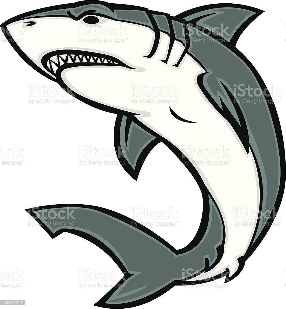 white shark vector art illustration