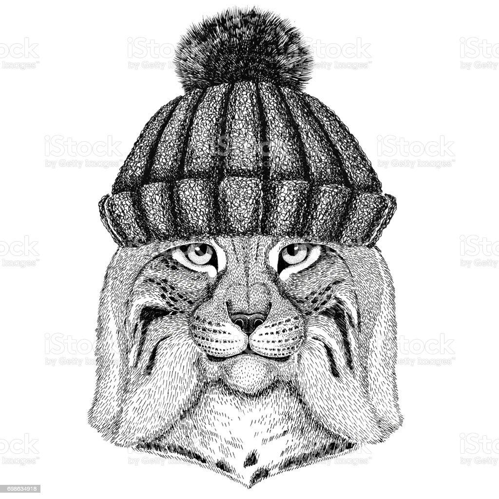 Wild cat Lynx Bobcat Trot wearing winter knitted hat vector art illustration