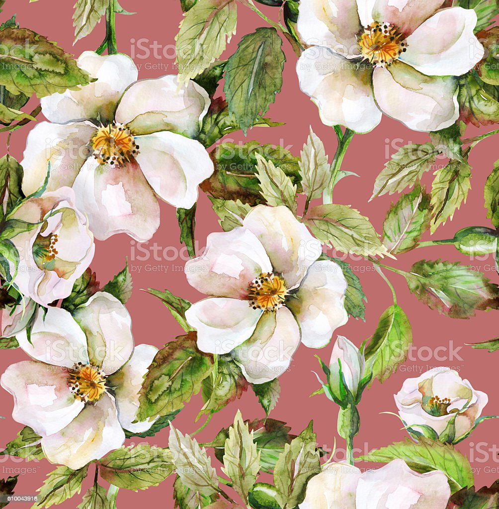 Wild Roses Seamless Pattern vector art illustration