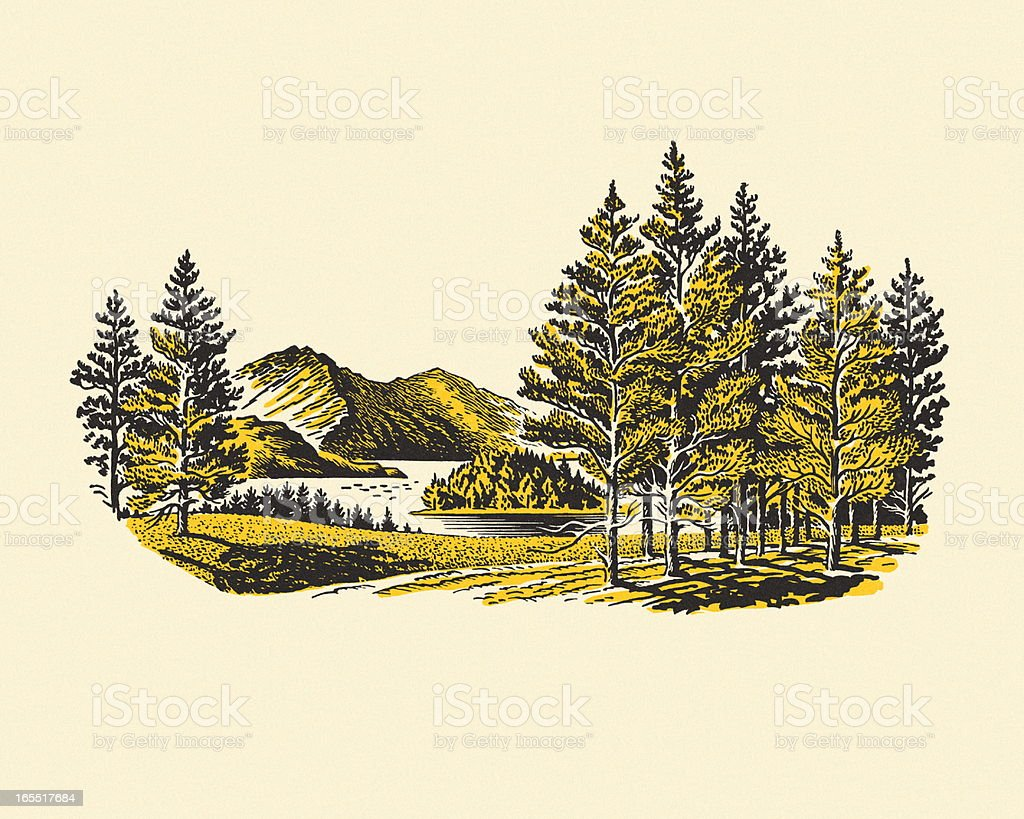 Wilderness Lake vector art illustration