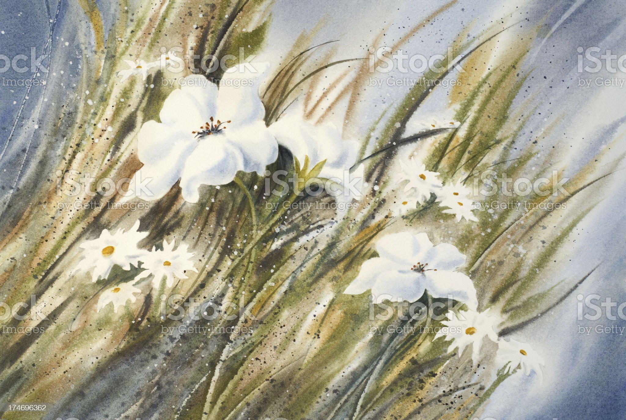 Wildflower Meadow royalty-free stock vector art