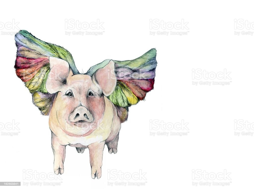 Winged Pig Illustration royalty-free stock vector art