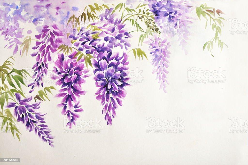 Glycine blossom stock vecteur libres de droits 534190083 for Glicine disegno
