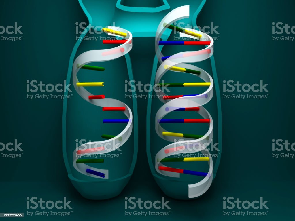 RNA with DNA,3D rendering stock photo