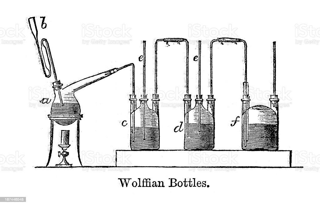 Wolffian bottles vector art illustration