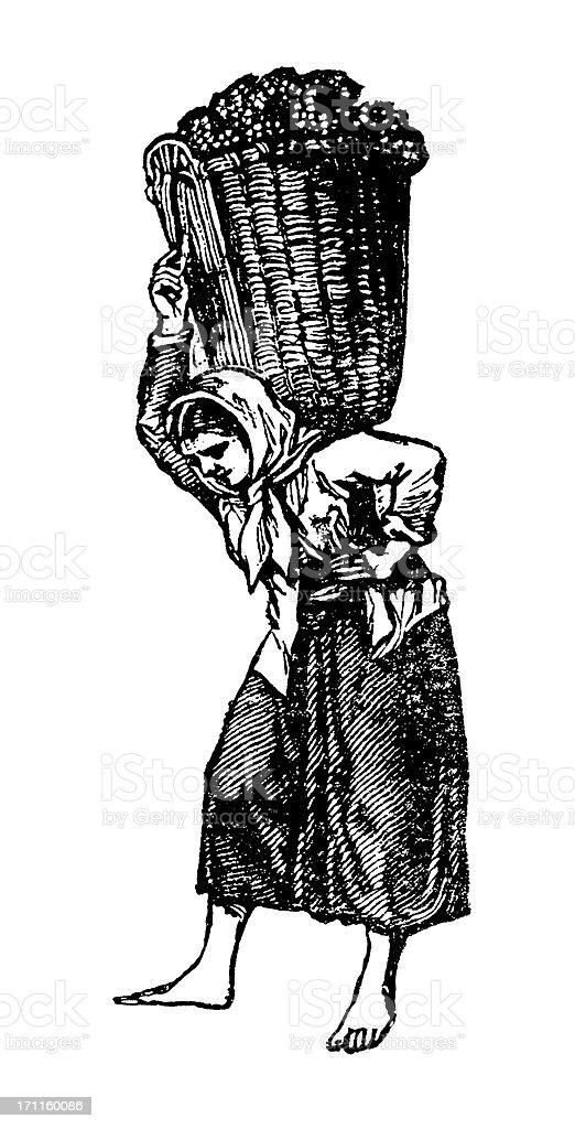 Woman Picking Wine Harvest | Vintage Vineyard Clipart vector art illustration