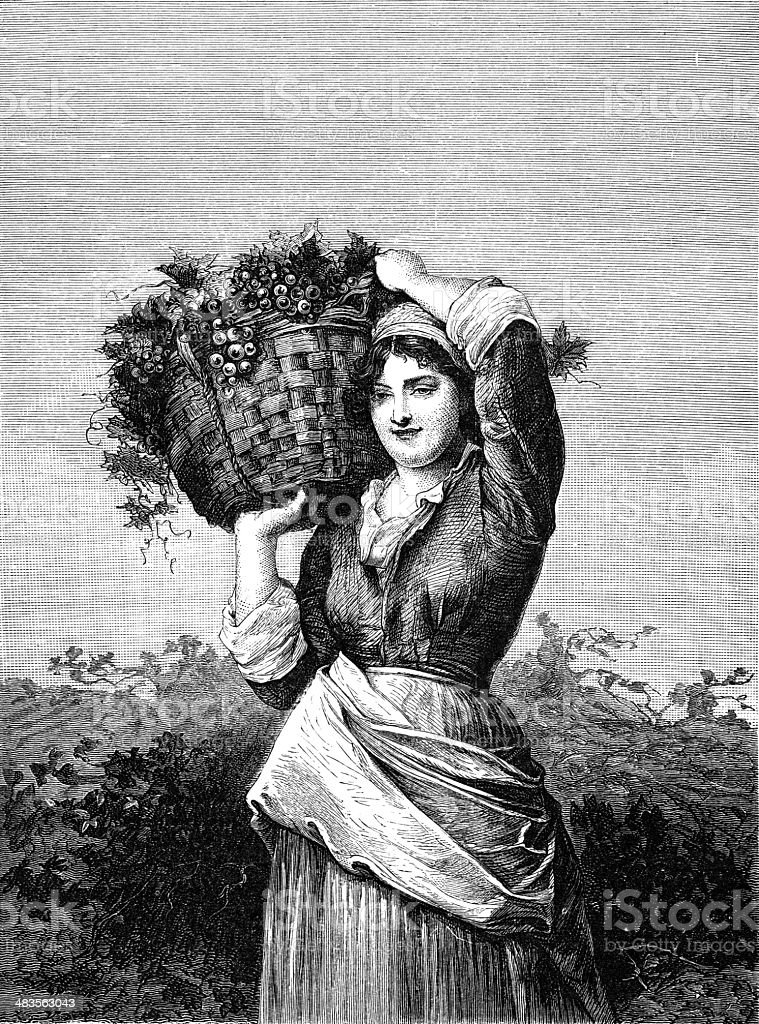 Women Carrying Grapes vector art illustration