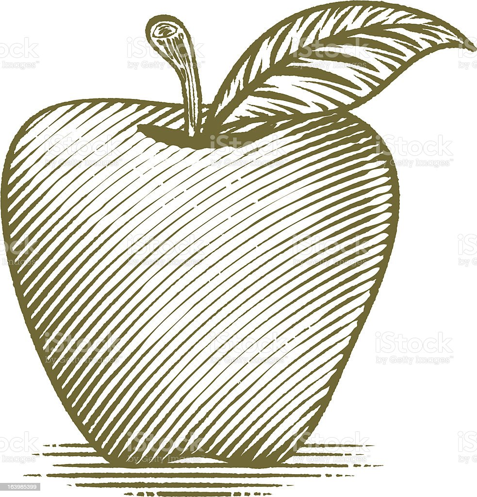 Woodcut Ripe Apple royalty-free stock vector art