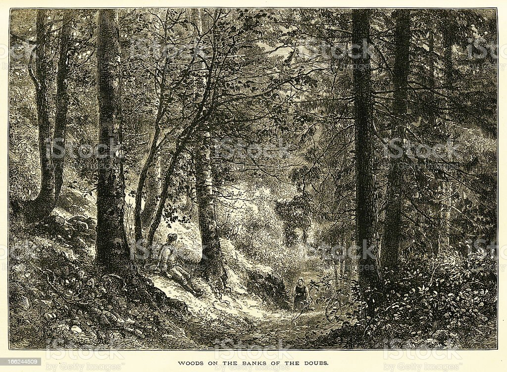Woods on the banks of Doubs River (antique wood engraving) royalty-free stock vector art