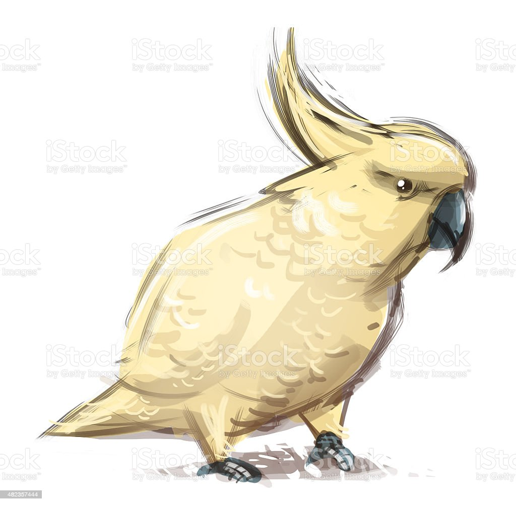 cacatua amarilla vector art illustration