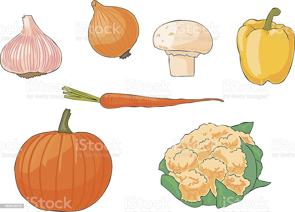 yelow vegetables royalty-free stock vector art