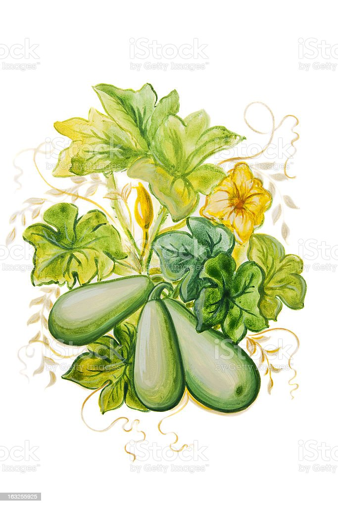 Zucchini Painting vector art illustration