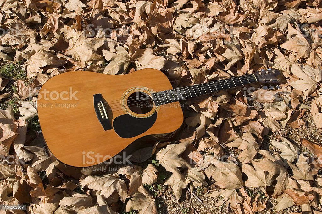 ACOUSTIC GUITAR IN LEAVES royalty-free stock photo