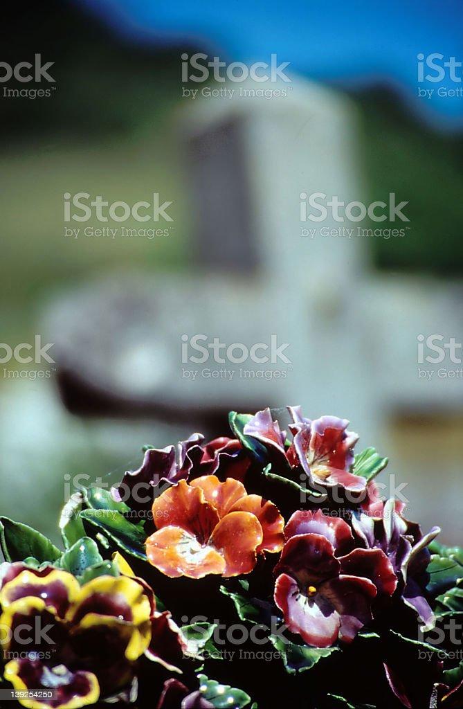 RIP royalty-free stock photo