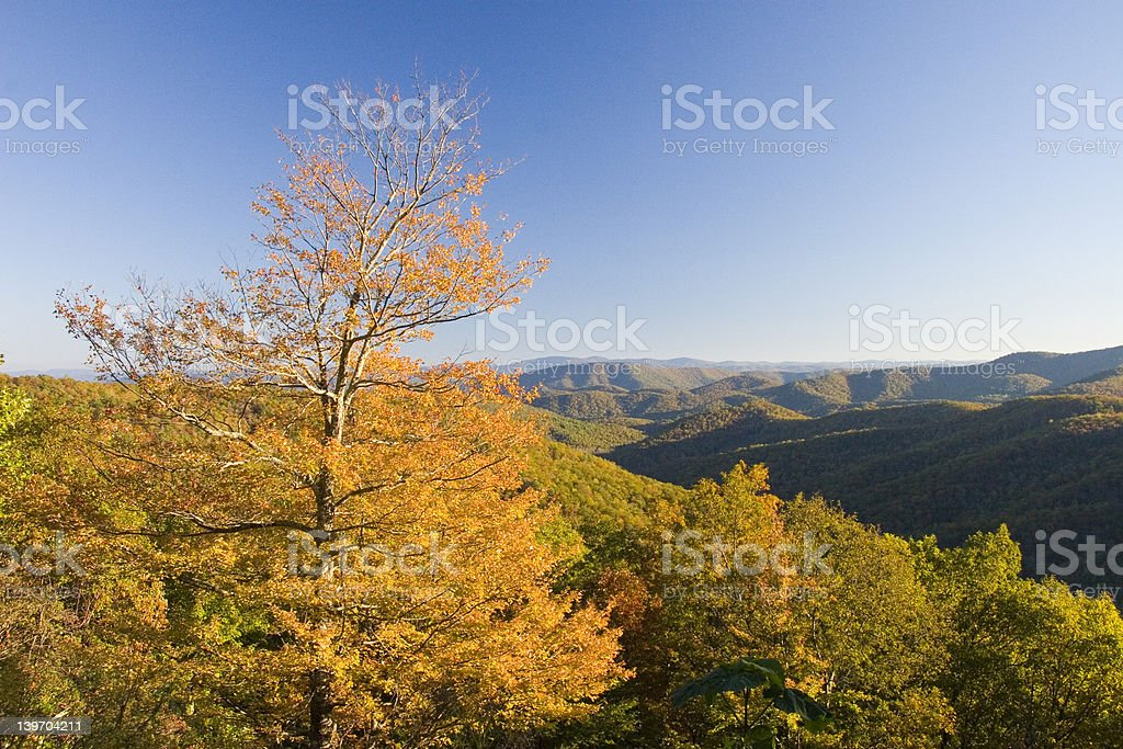 BLUE RIDGE PARKWAY FALL COLOR AT OVERLOOK royalty-free stock photo
