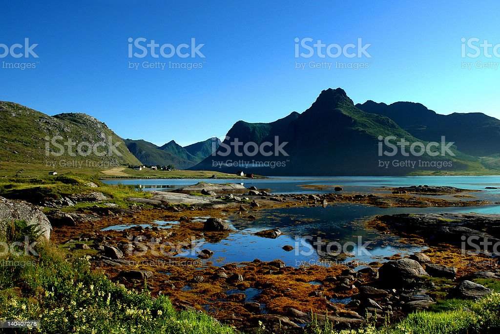 SUMMERTIME BY THE FJORD royalty-free stock photo