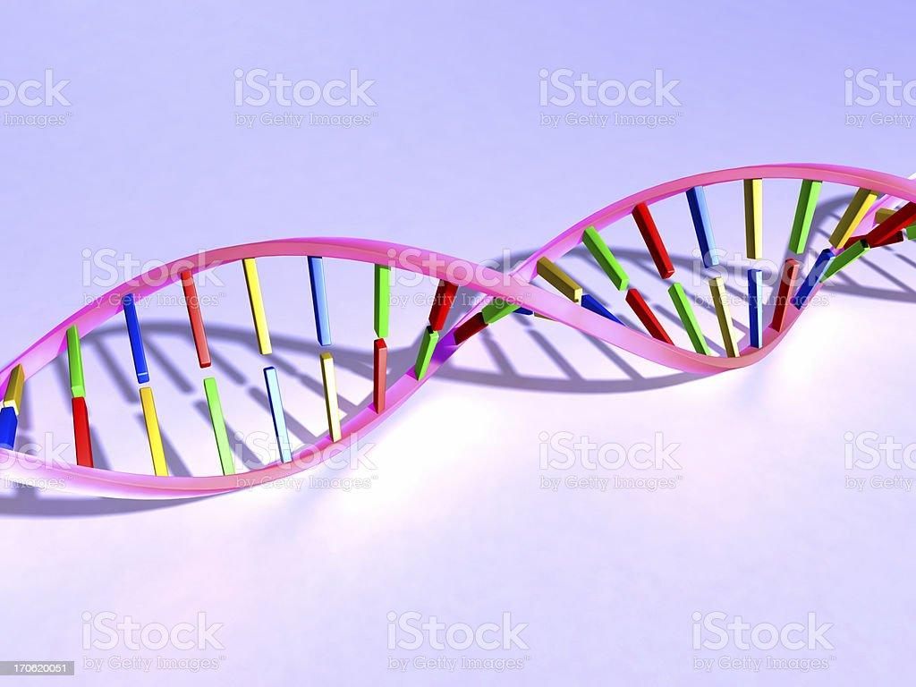 DNA royalty-free stock photo