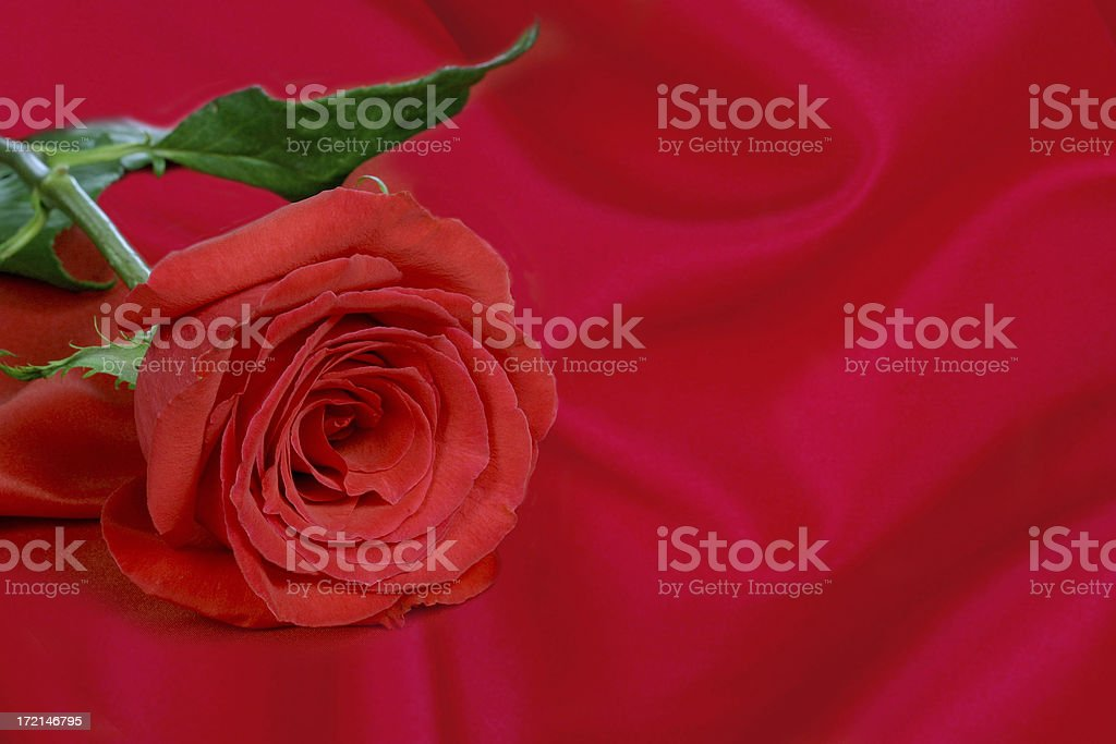 LOVE (with room for copy!) royalty-free stock photo