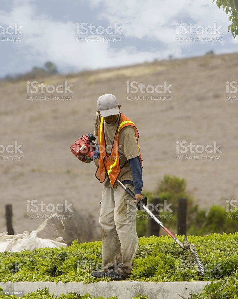 TRIMMER royalty-free stock photo