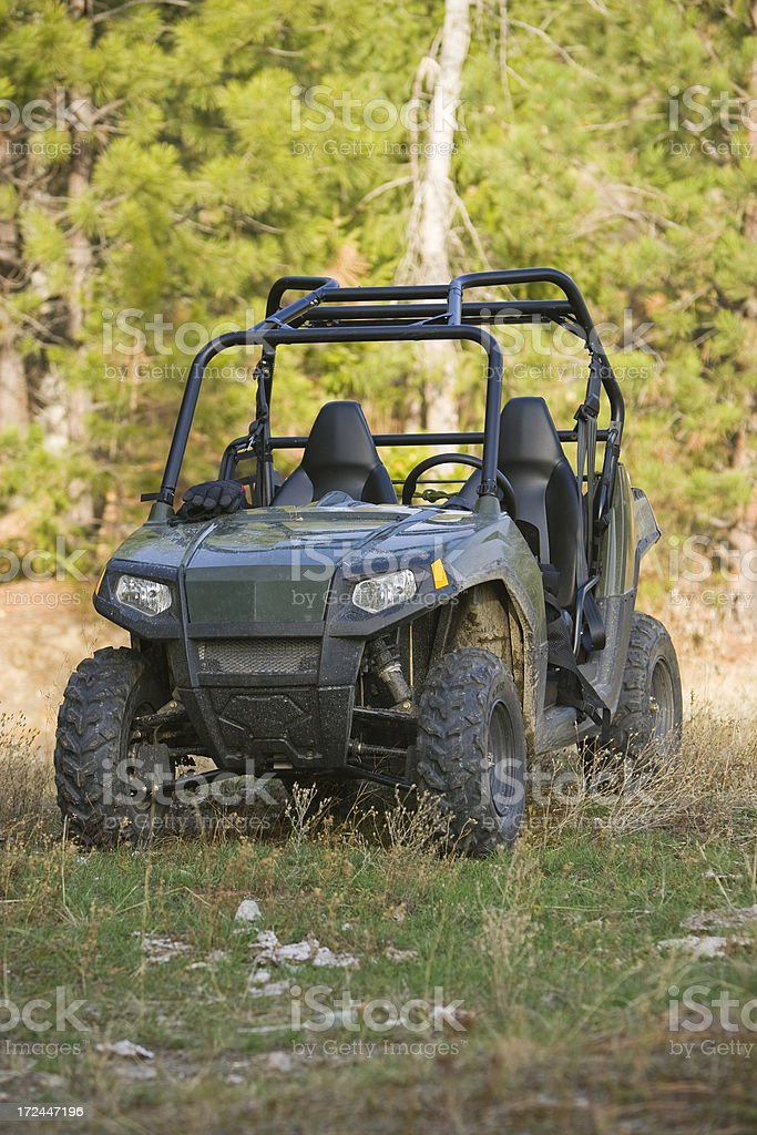 UTV royalty-free stock photo