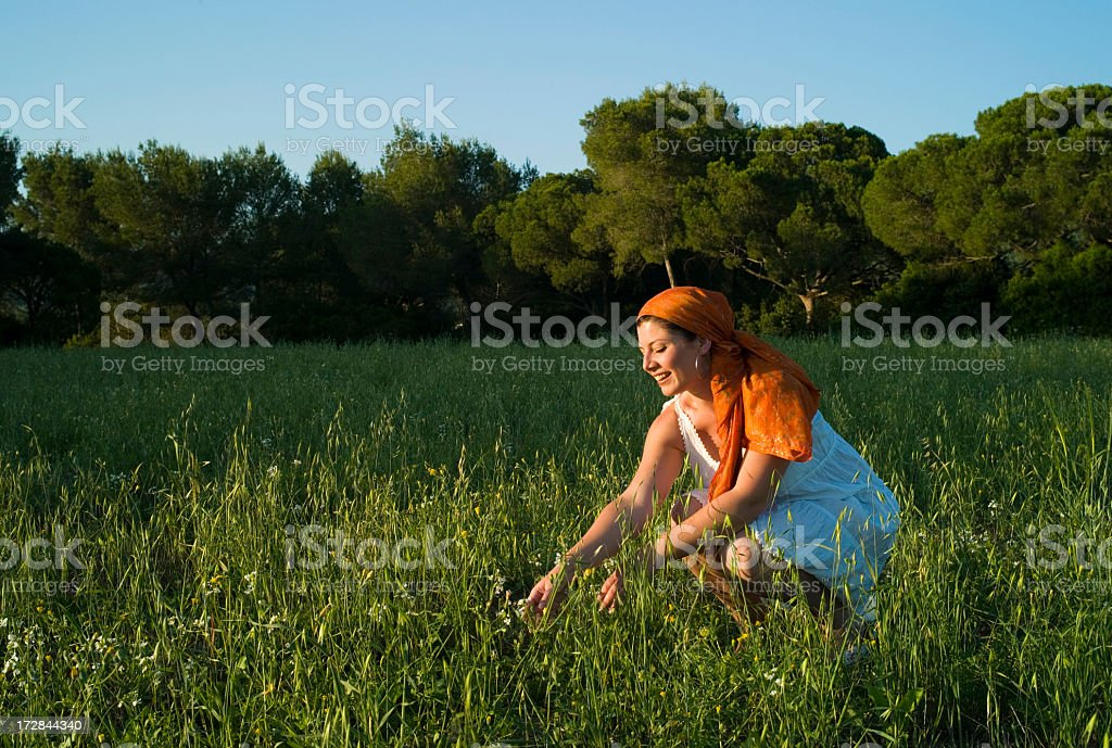 GIRL TAKING FLOWERS ON SUNSET stock photo