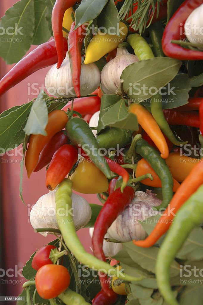 MEDITERRANEAN VEGE MEDLY royalty-free stock photo