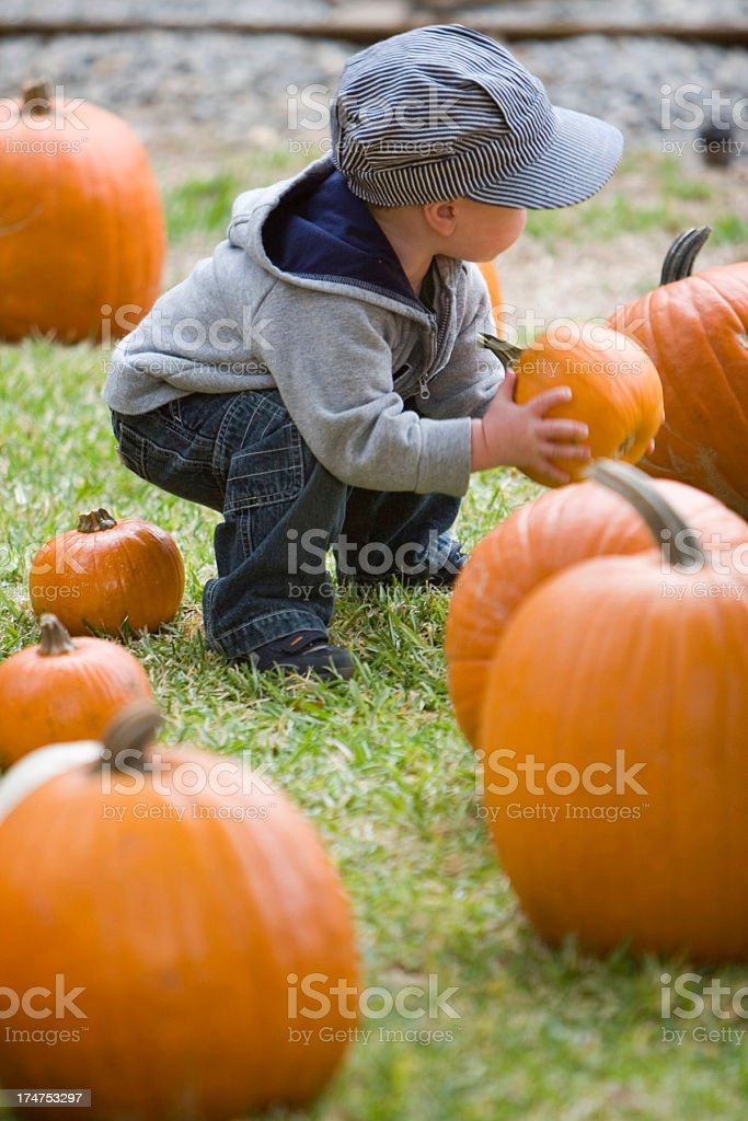 LITTLE BOY WITH PUMPKIN #3 stock photo