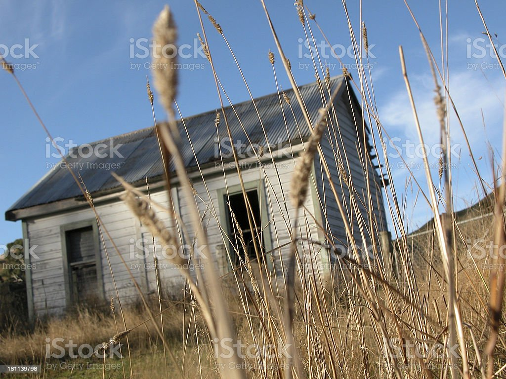 OLD SHED IN CORN royalty-free stock photo