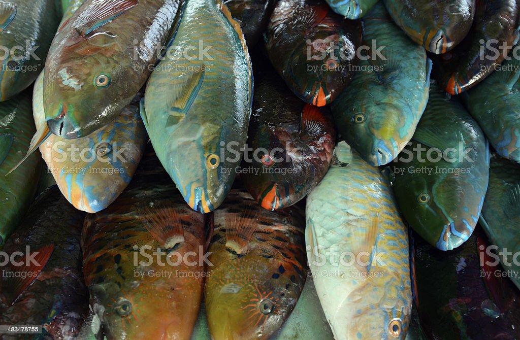 THAILAND PHUKET FISHMARKET FISH stock photo