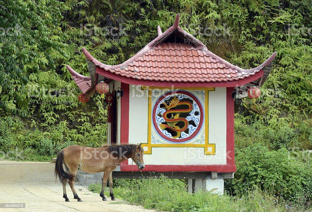 ASIA THAILAND MAE HONG SON royalty-free stock photo