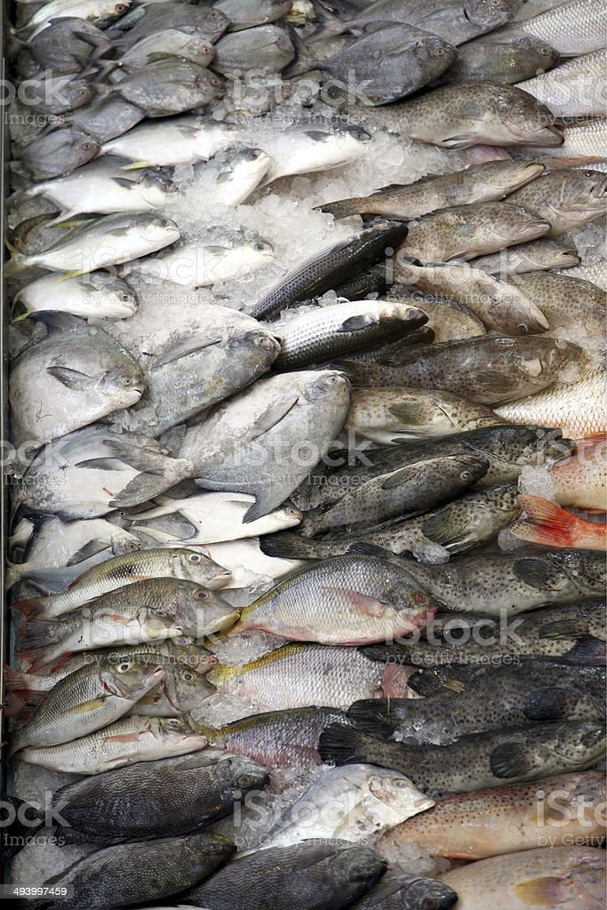 ASIA SINGAPORT MARKET FISH stock photo