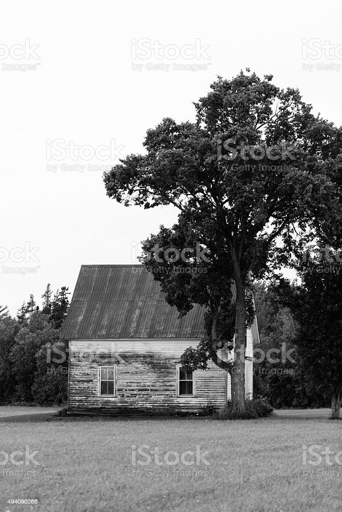 BLACK AND WHITE TREE AND OLD HOUSE stock photo