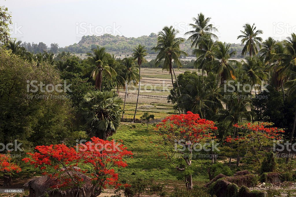 OST TIMOR TIMOR-LESTE stock photo