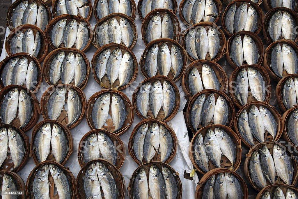 ASIA LAO VIENTIANE MARKET FISH stock photo
