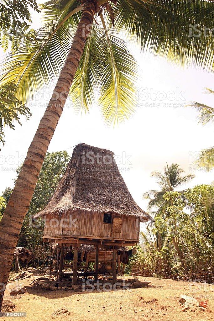 ASIA EAST TIMOR RACA VILLAGE HOUSE stock photo