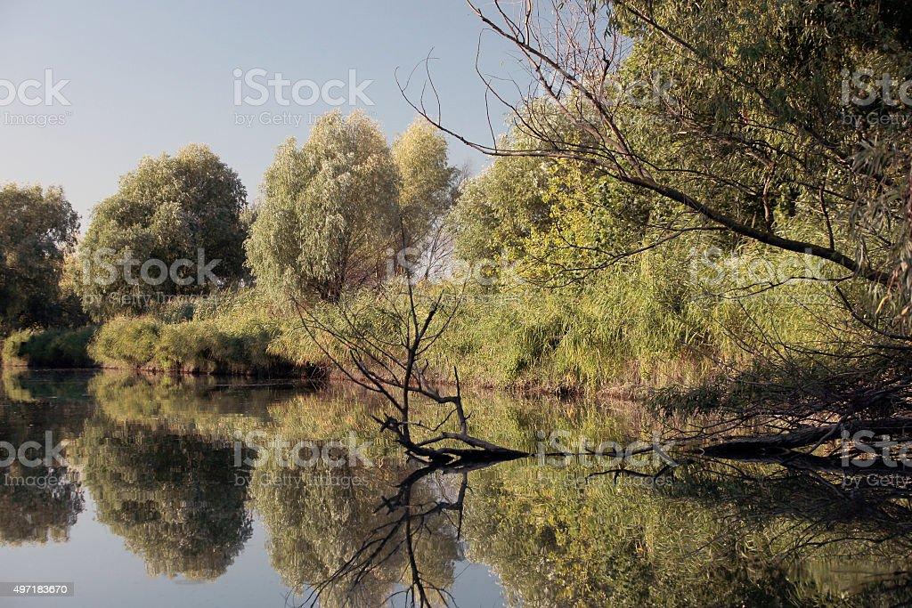 отражения royalty-free stock photo